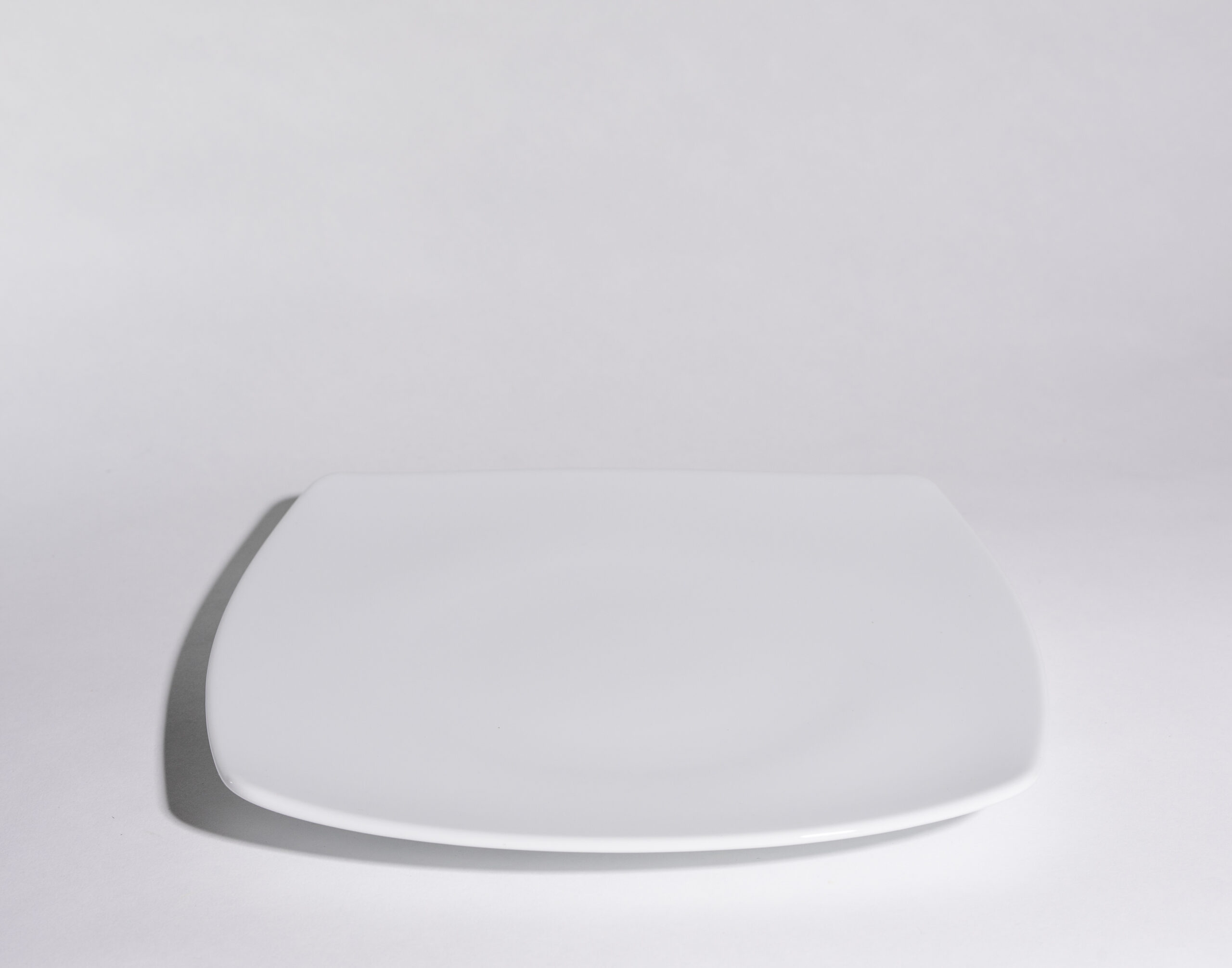 Lunch plates (10'')